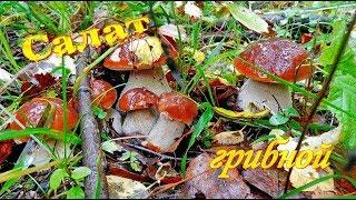 Салат грибной. Из сушёных грибов. Видео рецепты от Борисовны.