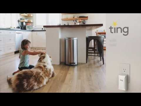 Ting Electrical Fire Prevention - Homeowner Case Study (Ting by Whisker Labs, Inc.)