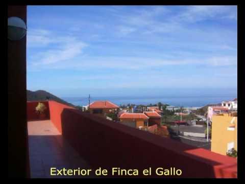 Promotional video #0 for Finca El Gallo