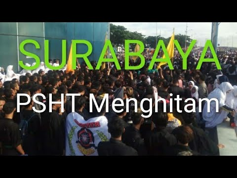 PSHT Surabaya Menghitam Di Jembatan Suramadu
