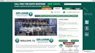 Pest Control Services - Website Review