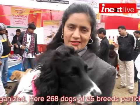 All Breed Dog Show in Patna