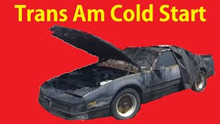 Cold Start & Clean Barn Find Old Cars Trans Am GTA Part #1
