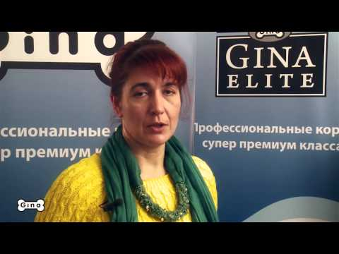 Классификация кормов для домашних животных  Корма Gina и Gina Elite mp4