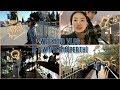 양평여행 / 중원계곡 / 상상글램퍼스 / 양떼목장 / 글램핑
