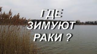 Подводный мир озера весной.Full HD.(Подводный мир озера в марте.Производились только сьёмки.Никто из животного и растительного мира не пострад..., 2014-04-07T20:59:55.000Z)