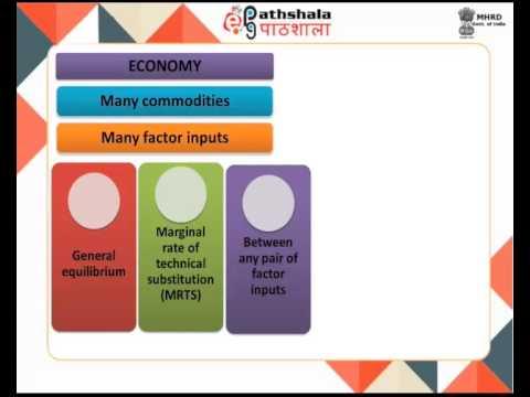 General equilibrium in production (ECO)