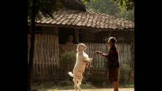Indonesia Pusaka - Viky Sianipar