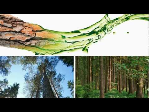 UPM - Creating biofuels of the future