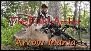 BOWHUNTING: Arrow Mania!!! 80 Lumenok Shots!!!