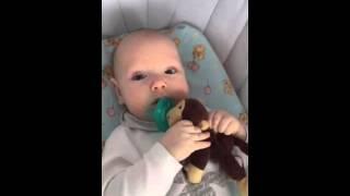 Maks Hollywood/соска Wubbanub(Соска Wubbanub! Даже 3-х месячный малыш способен помещать ее самостоятельно в ротик! Обнимать и теребить любимую..., 2015-11-28T19:45:36.000Z)