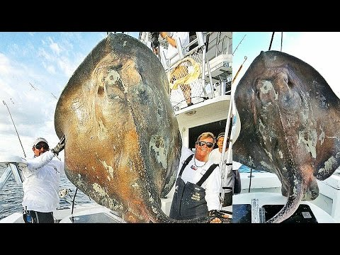 10 Deep Sea Discoveries