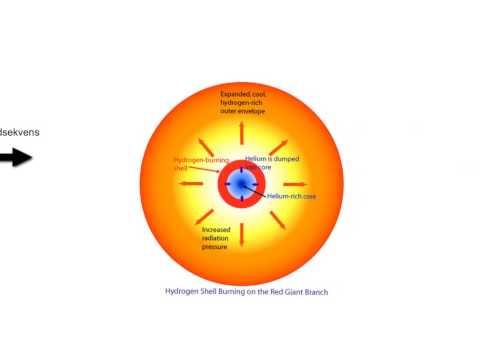 Proton-proton kæde forklaret