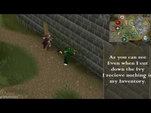 Runescape :Ivy WoodCutting !102k xp per hour!-( Best Woddcutting Exp In all Of Runescape!)