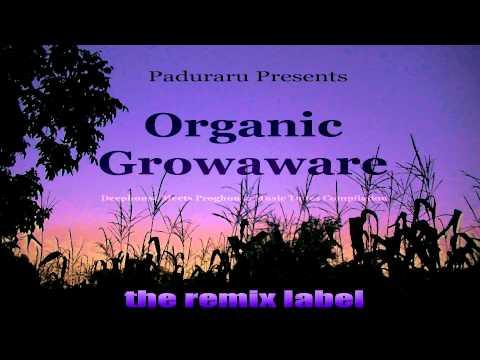 #Paduraru Presents Organic Growaware #Deephouse Meets #Proghouse #Music Tunes FullAlbum #Compilation