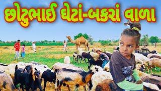 છોગાળજી ઘેટાં-બકરાં અને ઊંટ વાળા | Chotu Comedy| Gujarati Comedy Video|કોમેડી વિડિયો Rajdhani studio