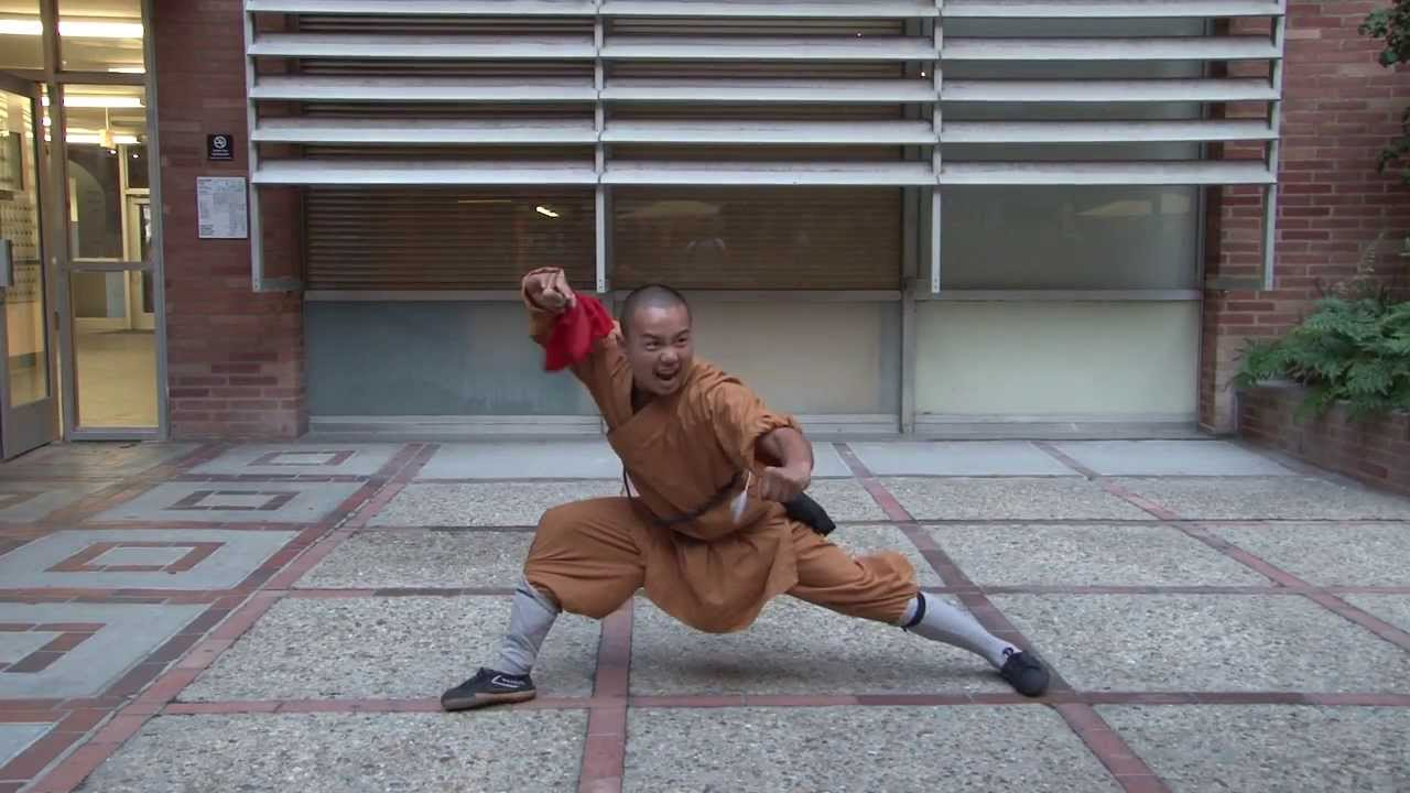 Shaolin Warrior 2013