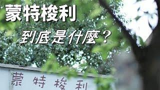 蒙特梭利教育法簡介【選幼兒園必看】