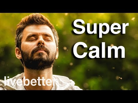The Most Relaxing Music Video Ever Created | Nature for Relaxation Meditation Tranquility Calm