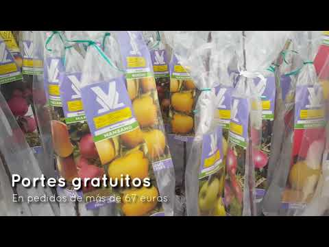 Arboles frutales en Plantamus® from YouTube · Duration:  40 seconds
