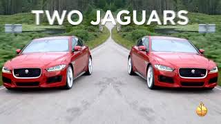 Jaguar Give Away - Voice Over by Jordan Jones