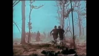 """""""'Don't Fear the Reaper'"""" Combat Footage from LZ X-Ray (Battle of Ia Drang)"""