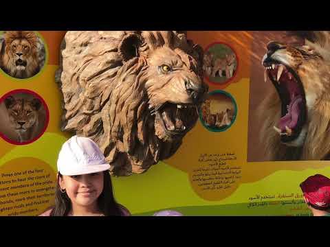 #3 Dubai Safari Soft Opening