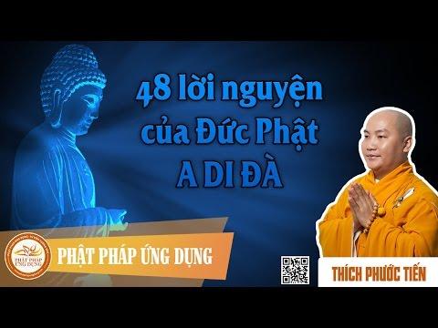 48 Lời Nguyện Của Đức Phật A Di Đà - Thầy Thích Phước Tiến