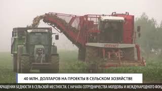 40 млн  долларов на проекты в сельском хозяйстве