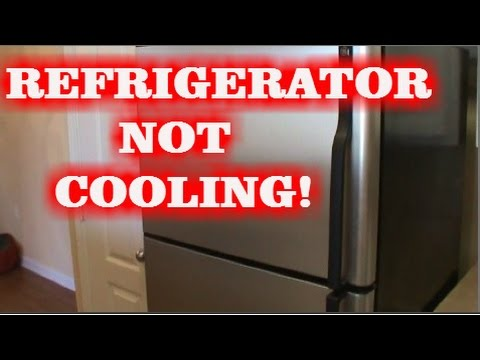 FIXING A REFRIGERATOR NOT COOLING