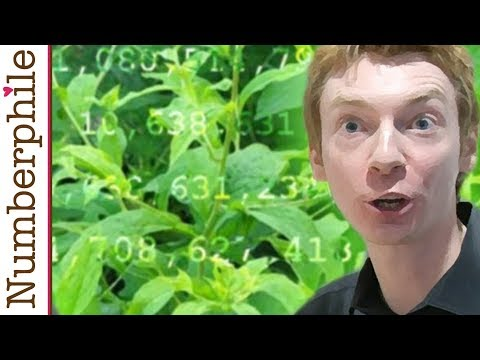 Primes are like Weeds (PNT) - Numberphile