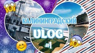 Калининградский VLOG #1 | Прилёт, Корабль и Море!(А вот и первый влог с отдыха в Калининграде! В этом видео вы увидите: огромный корабль