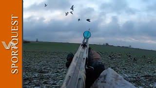 Goose Shooting in Sweden