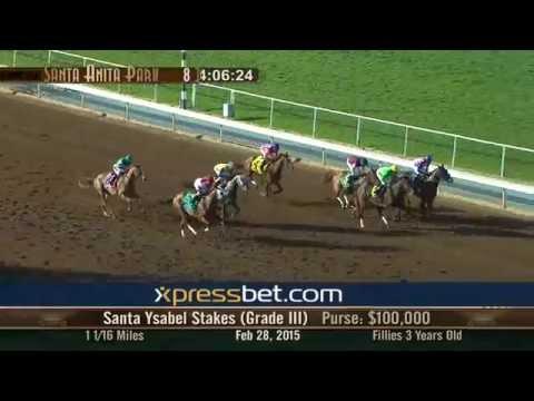 Santa Ysabel Stakes Gr. III - Saturday, February 28 2015 HD