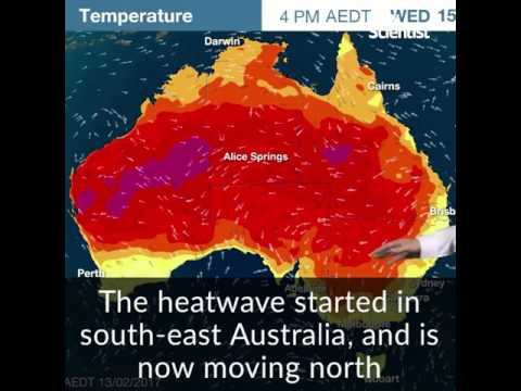 Australia's extreme heatwave is a preview of things to come
