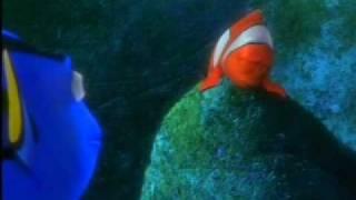 Buscando a Nemo - Dory nadaremos nadaremos