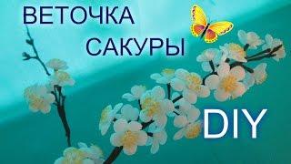 сакура своими руками  МАСТЕР КЛАСС / Цветы яблони/ Елена Шевченко