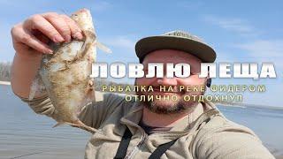 Рыбалка на реке ФИДЕРОМ Ловля ЛЕЩА
