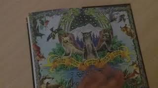 Обзор Коты Воители