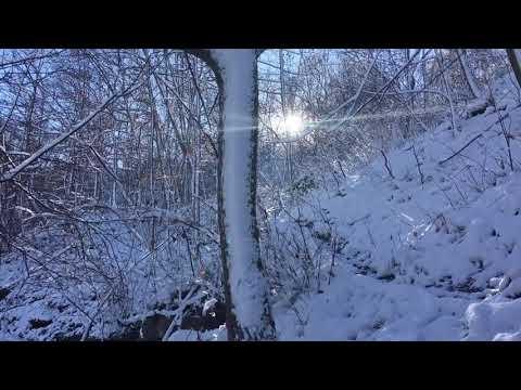 Devil's Punchbowl Conservation Area Hamilton | Story Creek,