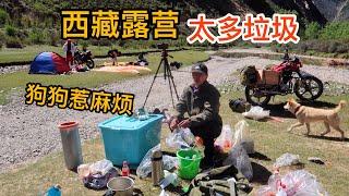 892集:去西藏偶遇三个帅哥露营,一小伙带着流浪狗旅行一年,今天半斤惹麻烦,西藏草地上太多垃圾,素质跟贫富没关系