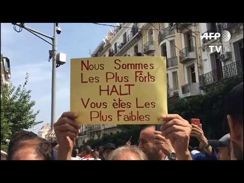 Algérie: 31ème vendredi de manifestations contre le régime | AFP Images