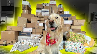 DOG GETS OVER 150 PRESENTS FOR CHRISTMAS!