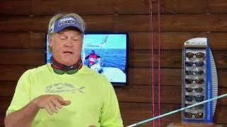 Tripletail Fishing Tackle Setup DOA 2.75 Shrimp