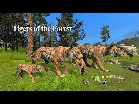 Tigers Of The Forest By Wild Foot Games - Android / IOS - Gameplay