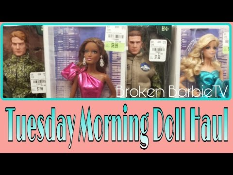 Toy Haul from TUESDAY MORNING: New Male Dolls REVIEW| WILD ADVENTURE DOLLS