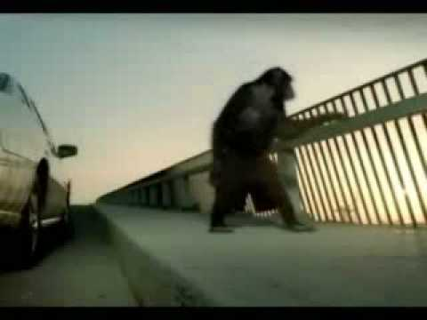 Trunk Monkey Commercials Youtube