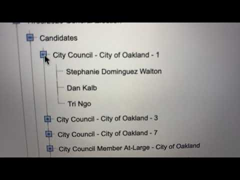 Dan Kalb Draws Stephanie Walton, Tri Ngo As Oakland City Council District 1 Challengers