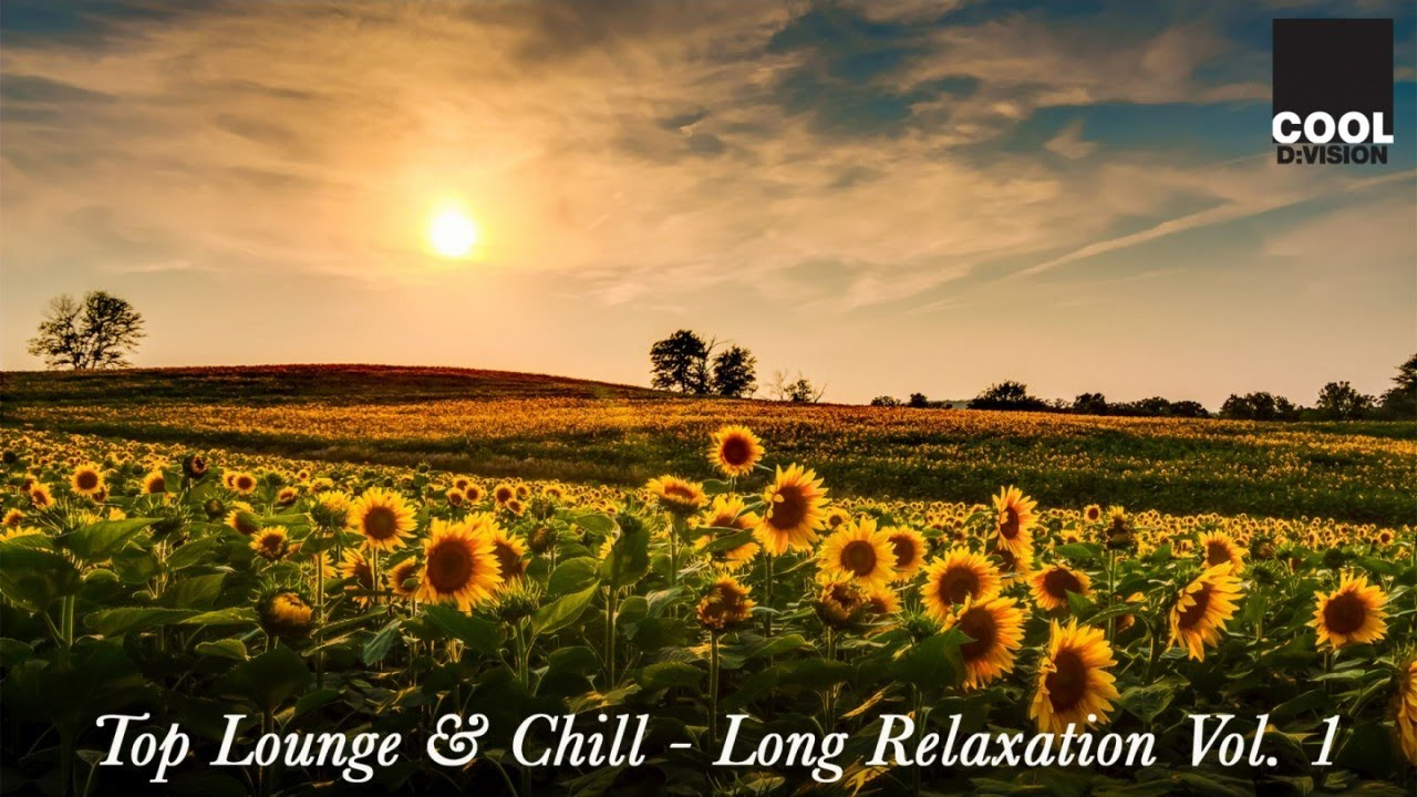 Top Lounge Music & Chill Out | Long Relaxation Vol  1 (1 Hour Non Stop Mix)  by Cool d:vision