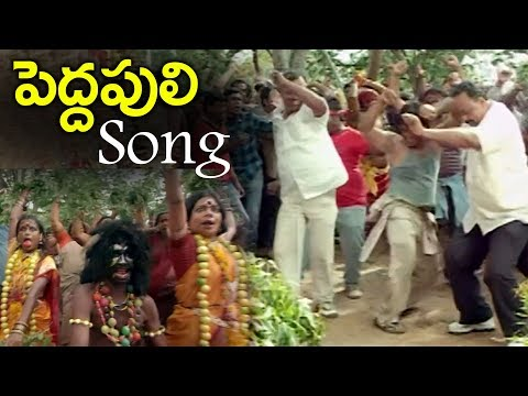 Pedda Puli Folk Song | Telangana Folk Songs | Volga Videos